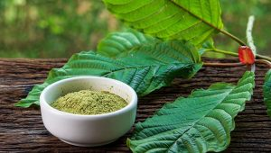 green kratom dosage